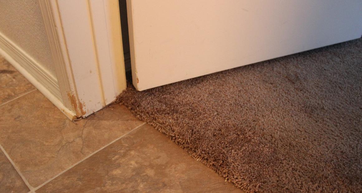 Carpet Repair Amp Cleaning Calgary
